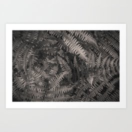 Ferns are Damn Beautiful. Art Print