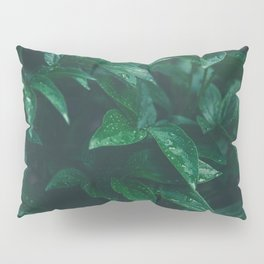 Green Leaves with Water Droplet - Nature Photography Pillow Sham