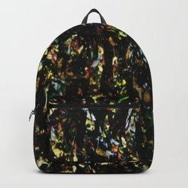 Ta procédure 9 Backpack