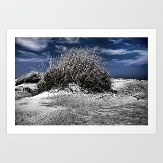 Windblown Art Print