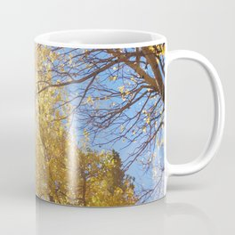 Quaking aspen at EstesPark, CO Coffee Mug