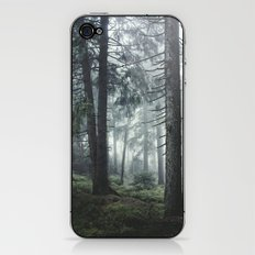 Path Vibes iPhone & iPod Skin