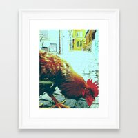cock Framed Art Prints featuring cock by habish