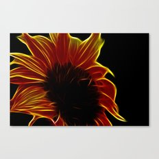 Sunflower glow Canvas Print