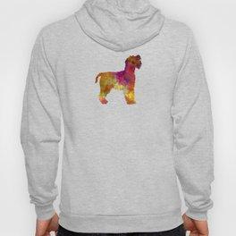 Welsh Terrier in watercolor Hoody