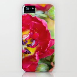 Fiery Red Flowers iPhone Case