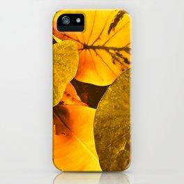 Lau iPhone Case