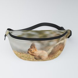 Squirrel's Lunch Break #decor #society6 Fanny Pack