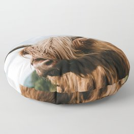 Scottish Highland Cattle - Animal Photography Floor Pillow