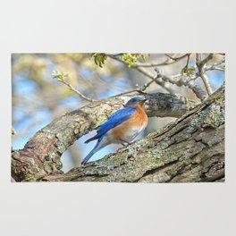 Bluebird in Tree Rug