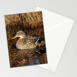 Mallard Duck Reflecting Stationery Cards