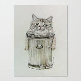 cat in bin Canvas Print