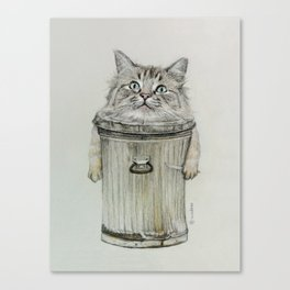 cat in bin Canvas Print