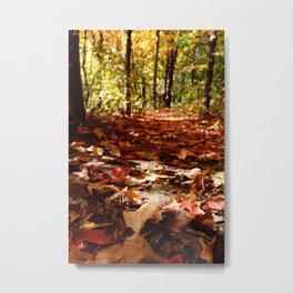 Fall Floor Metal Print