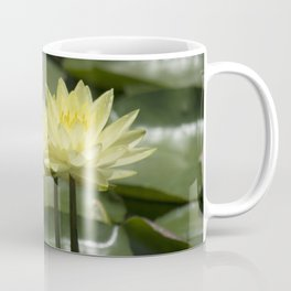 Longwood Gardens - Spring Series 294 Coffee Mug