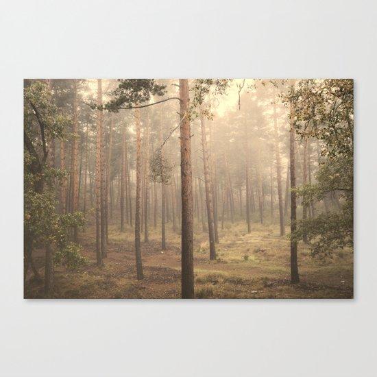 """""""Rectilineum"""". Secret places. Foggy dreams. Retro Canvas Print"""