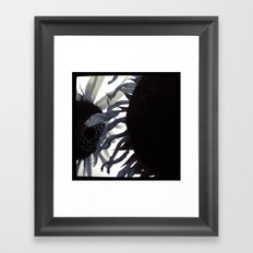 FLOWER 013 Framed Art Print