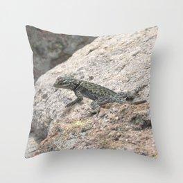 Desert Spiny Lizard, No. 1 Throw Pillow