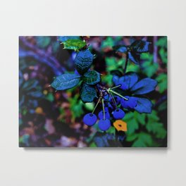 Exotic fruit and rich. Metal Print