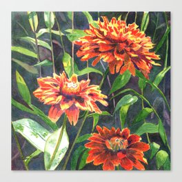Orange Zinnias Canvas Print