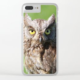 Owl_20180213_by_JAMFoto Clear iPhone Case