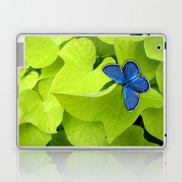 Blue Butterfly Laptop & iPad Skin