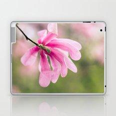 The Magnolia Bloomed Yesterday Laptop & iPad Skin
