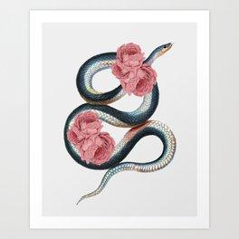 Serpent of love Art Print