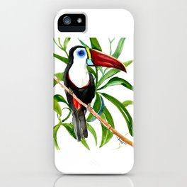 Toucan in Jungle, White-Throated Toucan iPhone Case