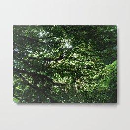 Wall of Leaves Metal Print