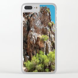 Desert Canyon Wall Clear iPhone Case