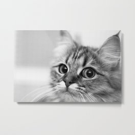 I'm watching you Metal Print