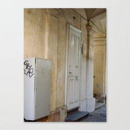 Romanian Works 14 Old Door Canvas Print
