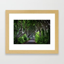 Dark Hedges, Northern Ireland. Framed Art Print