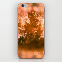 Dreaming nature iPhone Skin