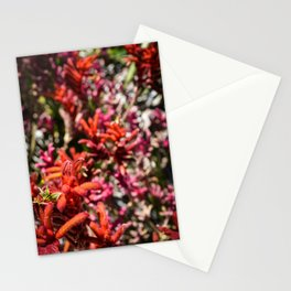 Flowers in Pink and Red Stationery Cards