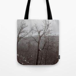 Wintry Desolation Tote Bag
