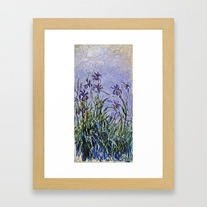 Claude Monet  -  Iris Mauves Framed Art Print
