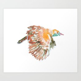 Claudio the bird Art Print