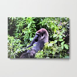 I know what you're thinking... Metal Print