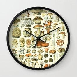 Mushroom Science Illustration - Adolphe Millot Poster Botanical Print Mushroom Print Wall Clock
