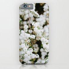 Bridal Veil Slim Case iPhone 6s
