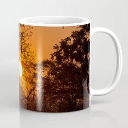 Sultry sun setting behind the sausage tree Coffee Mug