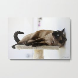 What's Up? Metal Print