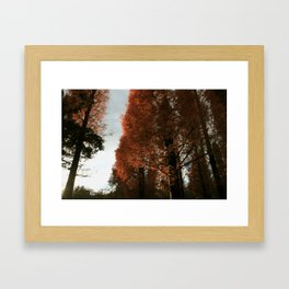 autumn 2013 Framed Art Print