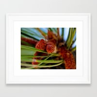 rustic Framed Art Prints featuring Rustic by Nicole Stamsek