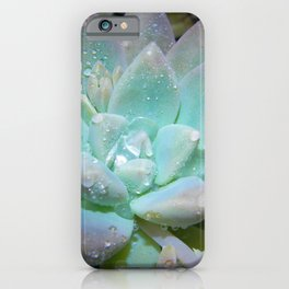 Pastel Succulent 2 iPhone Case