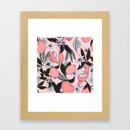 Flowering in the pink oranges Framed Art Print