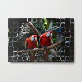 All About the Color Metal Print