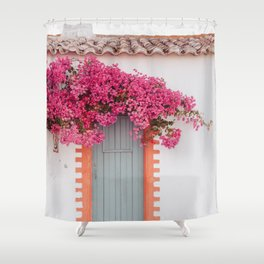 Summer Door Shower Curtain
